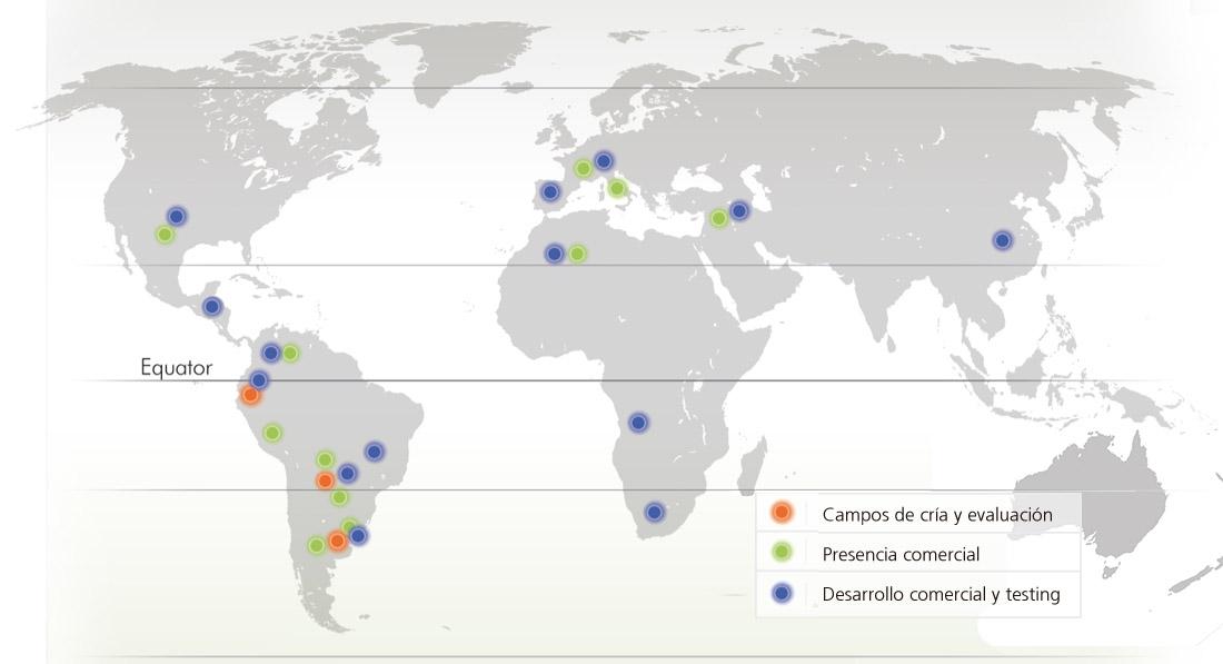 mapa-castellano